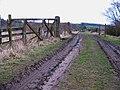 Markington Crossing - geograph.org.uk - 1143288.jpg