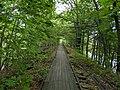 Mass Central Rail Trail, Hudson MA.jpg