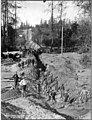 Men with shovels digging a trench across the Black River for the pipeline, October 13, 1899 (SPWS 459).jpg