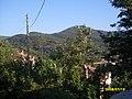Meskenin yeşil güzelliği ( r. nazilli ) - panoramio.jpg