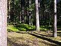 Mezs - panoramio (13).jpg