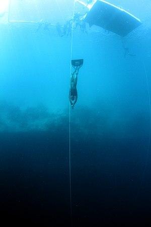 Michael Board - Michael Board British record holder In CWF Freediving