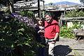 """Mis Padres en el jardin del """"Tata Chato"""" (2).JPG"""
