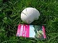 Monster Mushroom - geograph.org.uk - 242917.jpg