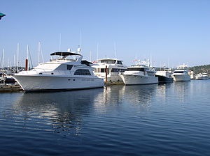 Multiple Motor Yachts