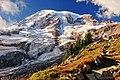 Mt. Rainier 1.jpg