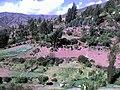 Mullucro -Tarma - panoramio.jpg