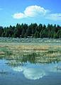 NRCSMT01082 - Montana (5011)(NRCS Photo Gallery).jpg