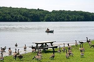 Nockamixon State Park - A scene from Nockamixon State Park