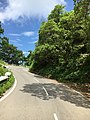 Nainital Road.jpg