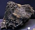 Naturmuseum Augsburg - mineral.jpg