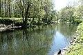 Naturschutzgebiet Chemnitzauen bei Draisdorf 4.jpg