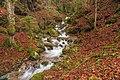 Naturschutzgebiet Gletscherkessel Präg - unterer Hinterwildbodenbächlewasserfall.jpg