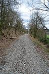 Nebenbahn Finnentrop-Wenholthausen (7066752315).jpg
