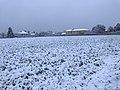 Neige à Saint-Maurice-de-Beynost (Ain, France) - décembre 2017 - 6.JPG