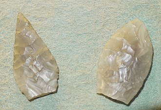 History of Sussex - Neolithic flint arrowheads found near Selsey