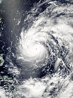 Typhoon Nepartak (2016) Pacific typhoon in 2016