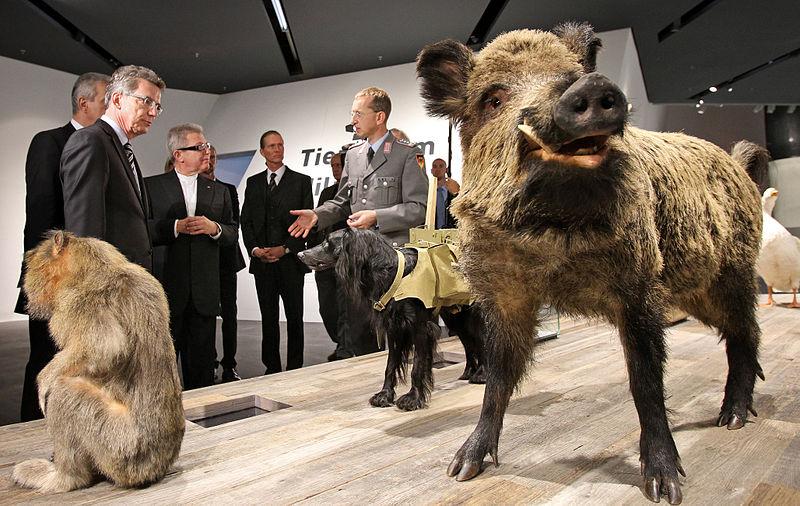 File:Neueröffnung des Militärhistorischen Museums der Bundeswehr 2011.jpg