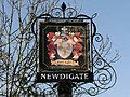 Newdigate village sign - geograph.org.uk - 688646.jpg