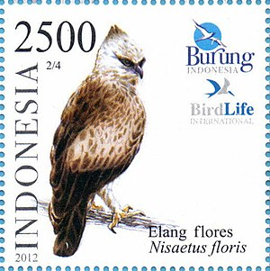 Nisaetus floris 2012 Indonesia stamp.jpg