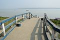 Northern Jetty - River Ichamati - Taki - North 24 Parganas 2015-01-13 4324.JPG