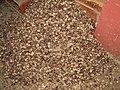 NutmegsGrenada11.jpg