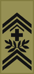 OR-9a - Adjudant d'état-major