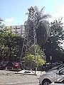 O Petróleo é nosso! Belo Horizonte Brazil.JPG