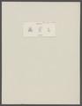 Oethra scruposa - - Print - Iconographia Zoologica - Special Collections University of Amsterdam - UBAINV0274 095 05 0002.tif