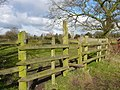 On the Staffordshire Way approaching Abbots Bromley Church - geograph.org.uk - 1728660.jpg