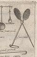 Opera di M. Bartolomeo Scappi, cuoco secreto di Papa Pio V MET DP163210.jpg