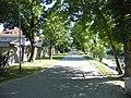 Opole, Poland - panoramio (156).jpg
