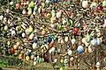 Ostereierbaum, mit 10.000 Eiern geschmückt IMG 9824WI.jpg