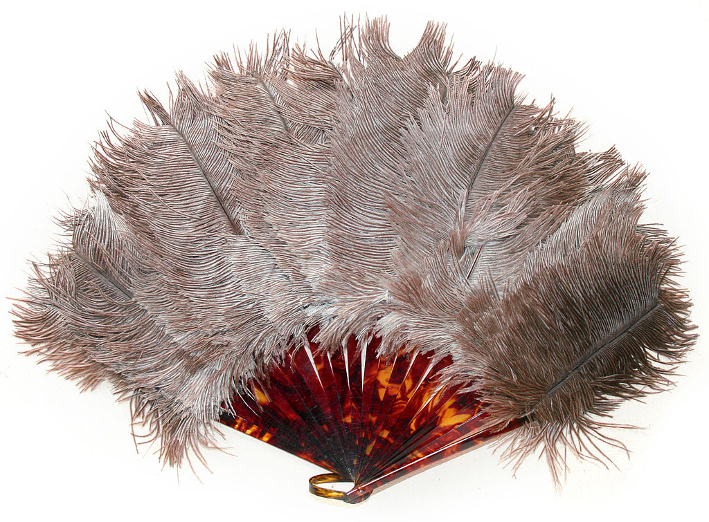 File Ostrich Feather  Art Deco  1920s Years Jpg