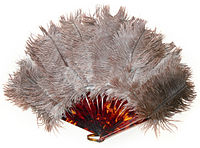 Ostrich feather, art deco. 1920s years.jpg