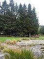 Otter Pool Picnic Area - geograph.org.uk - 601879.jpg