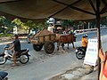 Ox-drawn cart Phan Rang.jpg