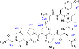 Vasopressin - Chemical structure of oxytocin