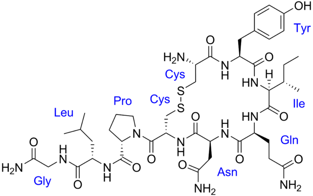 http://upload.wikimedia.org/wikipedia/commons/thumb/5/55/Oxytocin_with_labels.png/640px-Oxytocin_with_labels.png