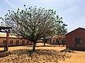 Péhunco - Cour de l'école primaire.jpg