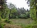 Püttlachweiher 2 - panoramio.jpg