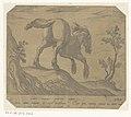 Paard een heuvel afrennend, van achteren gezien Paarden uit verschillende landen (serietitel) His ducibus princeps celebraberis ore viroru illa homines beat haec sideribusq locat (serietitel), RP-P-OB-207.832.jpg