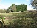 Paddock at Spring Farm near Barnsnap - geograph.org.uk - 1237124.jpg