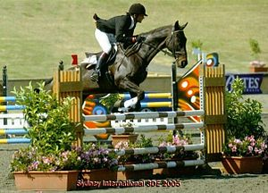 Sport in Pakistan - Usman Khan during the Show Jumping Phase at Asia Pacific Championship in Sydney.