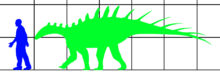 Silhouette of Paranthodon is shown to be three times longer than the human silhouette is tall