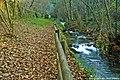 Parque da Cabreia - Portugal (4596459487).jpg