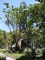 Parque del Este 2012 047.JPG