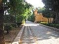 Paseo Jardines Catalina de Ribera. Sevilla..JPG