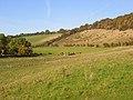 Pasture, Radnage - geograph.org.uk - 1014286.jpg