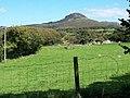 Pasture land and woodland on Coed-y-llyn Farm - geograph.org.uk - 1483577.jpg